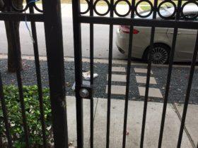 black-wrought-iron-entry-gate